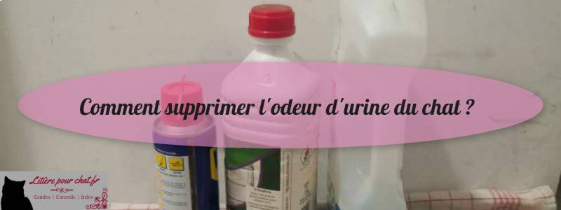 conseils pour enlever les odeurs d'urine d'un chat