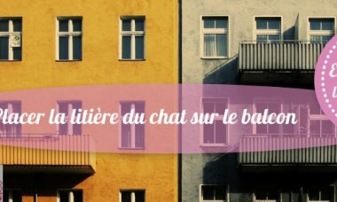 emplacement litiere chat balcon